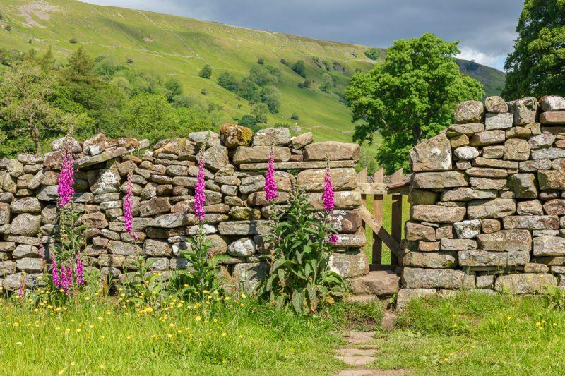 Yorkshire Dales gate prints
